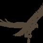 Tsimbal's Avatar